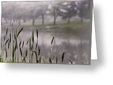 A View In The Mist Greeting Card