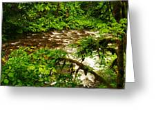 A View Of Eagle Creek Greeting Card