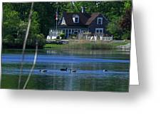 A View Of Some Ducks Enjoying Round Pond At The United States Military Academy Greeting Card