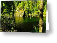 A View Of The Seleway River Greeting Card