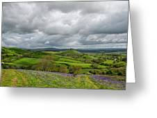 A View To Colmer's Hill Greeting Card