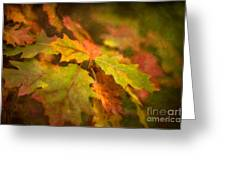 A Vision Of Fall Greeting Card