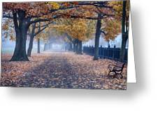 A Walk In Salem Fog Greeting Card