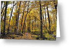 A Walk In The Dune Land Forest Greeting Card