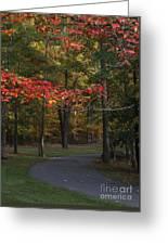 A Walk Through Fancher Davidge Park Greeting Card