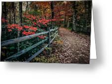 A Walk Through The Changes Greeting Card
