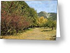 A Walk Through The Orchard Greeting Card