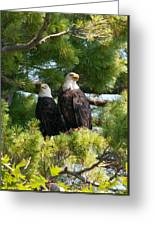 A Watchful Pair Greeting Card