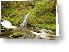A Waterfall Into Oneida Creek Greeting Card