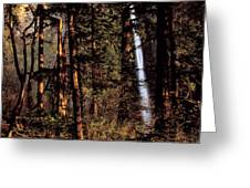 A Waterfall Tumbles Through The Forest Greeting Card