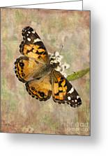 A Whisper Of Wings Greeting Card