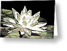 A  White Water Lily Greeting Card
