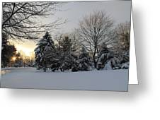 A White Winter's Morning Greeting Card