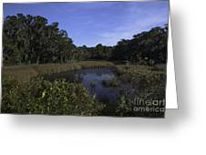 A Wide Expanse Of Marsh Greeting Card