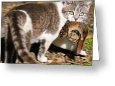 A Wild Cat Catching A Chipmunk Greeting Card