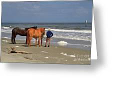 A Windy Day At Hunting Island Beach Greeting Card