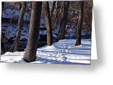 A Winter Day In New York Greeting Card