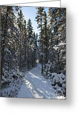 A Winter Poem.. Greeting Card
