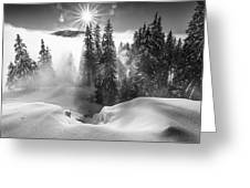 A Winter Tale ! Greeting Card