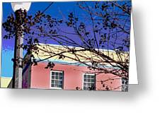 A Winters Day In Florida Greeting Card