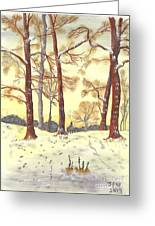 A Winters Glow Greeting Card