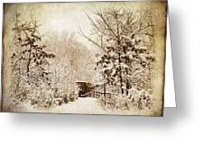 A Winter's Path Greeting Card