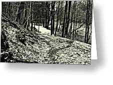 A Winter's Trail Greeting Card