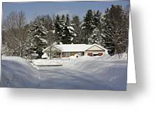 A Wintery Look Up A Driveway On Conifer Drive Greeting Card