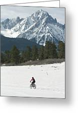 A Woman Bike Riding On The  Snow Greeting Card