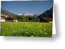 A Woman Walks Through An Alpine Meadow Greeting Card