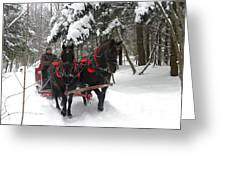 A Wonderful Day For A Sleigh Ride Greeting Card