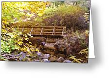 A Woodsy Walk In Golden Fall Color Greeting Card