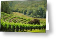 Abacela Vineyard Greeting Card