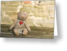 Abandoned Bear Greeting Card