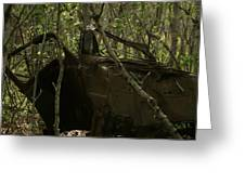 Abandoned Car In A Forest Greeting Card