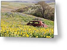 Abandoned Ford Buried In Wildflowers Greeting Card