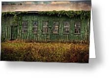 Abandoned Green Sugar Mill Building Dsc04353 Greeting Card