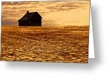 Abandoned Homestead Series Golden Sunset Greeting Card