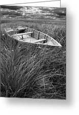 Abandoned Row Boat Along The Shoreline On Prince Edward Island Greeting Card