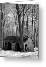 Abandoned Sugar Shack In Black And White Greeting Card