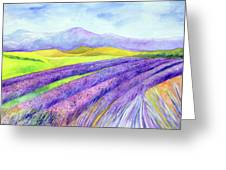 Abbey Fields At Senanque Greeting Card