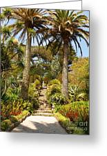 Abbey Gardens Of Tresco On The Isles Of Scilly Greeting Card