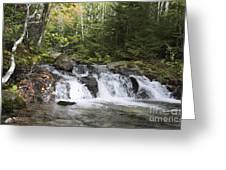 Abol Falls 4392 Greeting Card