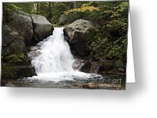 Abol Falls 4672 Greeting Card