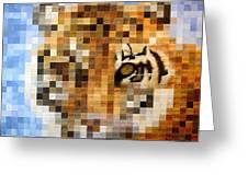 About 400 Sumatran Tigers Greeting Card by Charlie Baird