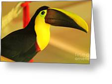 About A Beak  Greeting Card