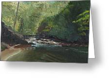 Above Bald River Falls Greeting Card by William Killen