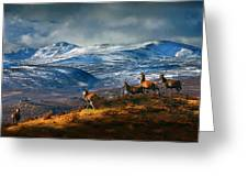 Above Strathglass Greeting Card