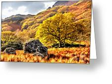 Above The 10 Mile Walk Greeting Card