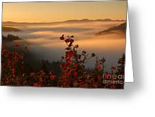 Above The Mists Greeting Card
